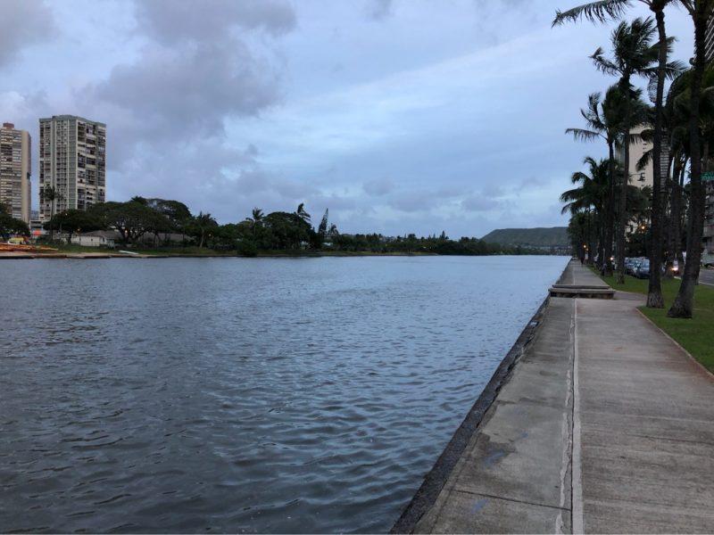 ハワイでオカッパリと言ったらアラワイ運河