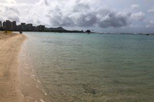 ハワイのおばちゃんに釣れると聞いてきたアラモワナビーチパーク