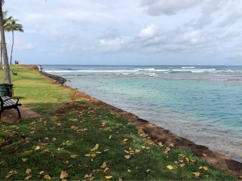 アラモワナビーチパークの向かって左側の堤防