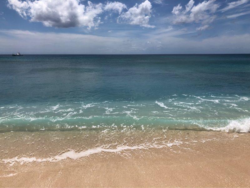 エレクトリックビーチの風景