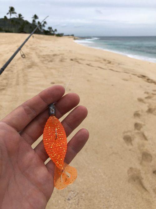 ハワイのビーチとスタッガーワイド