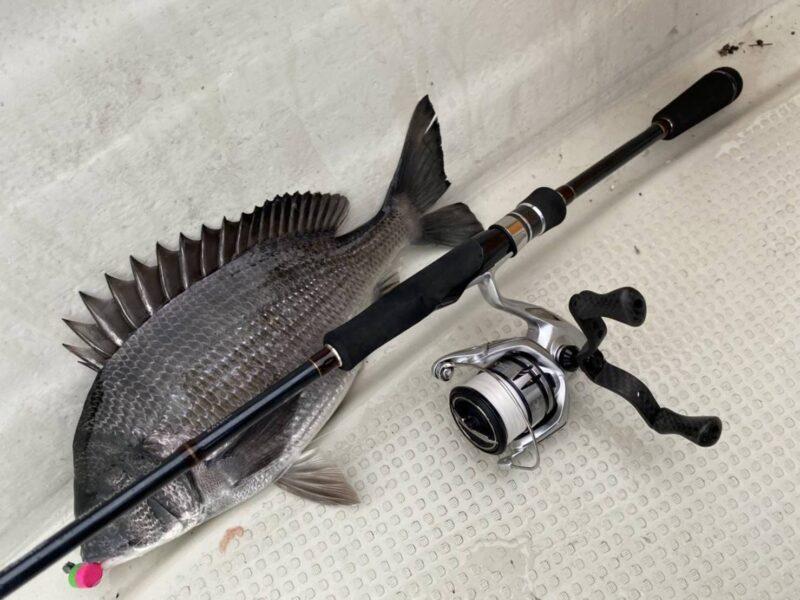 SSD BOATGAMER S76 BLACK&FLATで釣れた黒鯛
